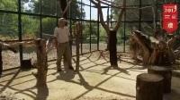 华勒比野生动物园Werribee Open Range Zoo
