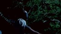 熊占伟上传【103】王华-电影【销魂刀】 上影1989