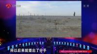 """""""神仙姐姐""""被疯抢 非诚勿扰 20170325 高清版"""