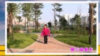 广西廖弟健身广场舞 那里的山那里的水 背面展示与动作分解 个人版