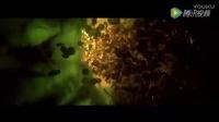 绿藻积分,小球藻介绍