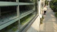 参观海安恒温农业
