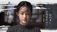《白鹿原》,1-86集全剧大结局简介,张嘉译 何冰 秦海璐 刘佩琦
