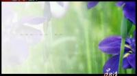 《品读》 20110527汪曾祺:花园