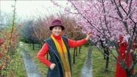 郑州植物园蜂蜜园一日游 二胡拉响奔腾曲  风琴奏鸣快乐醉           五野旅游团2017年3月
