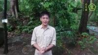 艾艾贴全国总代理陈欢欢艾灸养生林志颖4月21深圳湾