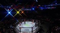 UFC On FOX 24 索萨VS维泰克尔