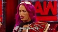 2017 - WWE RAW第1228期全程(中文字幕)