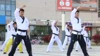 2017【苏州相城站】跆拳道裁判员、教练员新规则培训