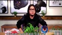 晓说2017:华语乐坛30年经典回顾!