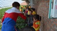 兴龙湾幼儿园——春季采摘活动