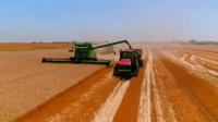 小麦收割机视频