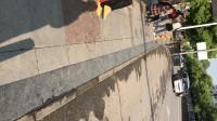 瓜子壳吐一地毫无素质,在景德镇樟树下车站曝光实拍