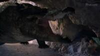 巨蟒大战恐鳄-人显得太渺小了