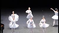 优雅的芭蕾舞也能这么逗比 你是被请来搞笑的吧