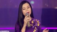 《酸果树叶飘飞》Vùng Lá Me Bay 杨鸿鸾 最新专辑MV Dương Hồng Loan,Tuyển Tập MV Mới Nhất
