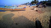 印度海滩鱼市