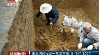 重庆涪陵发现——东汉古墓 距今约1800年 新闻夜航 170509