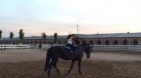 2月10个月小美女骑马-纵横马术