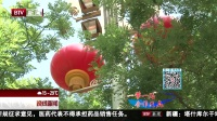 晚间新闻报道20170513花团锦簇 张灯结彩 美丽北京迎盛会 高清