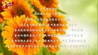 三叶草的故事