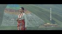国家电网安岳县供电分公司援藏mv《热流》