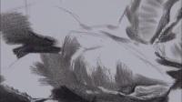 简单素描入门_代画素描头像_素描画人入门