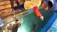 海立方~海狮