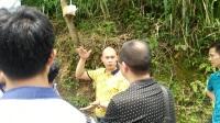 桂林胡蜂养殖基地考察