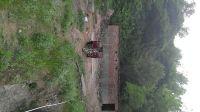 西安市周至县九峰镇一饮水源遭放养猪污染,向政府多部门投诉无果