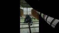 爱鸽进食视频纪录