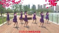 柯灵广场舞《相思的夜》团队版32步恰恰舞