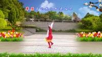 荣县丽丽广场舞 藏家乐 藏族舞 排舞 背面