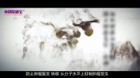 中医养生保健宣传片