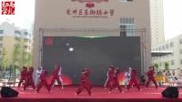 兖州♥舒华跆拳道馆 ♥铁路跆拳道馆♥二实小六一   表演   2017/5/27               朱思林