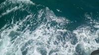 维多利亚湾湾