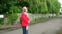 英国爱尔兰游记(第十五集游览伦敦郊区的田园风光)