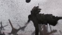 经典战争电影片段一 《拯救大兵瑞恩》抢滩登陆作战