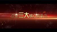 企业视频-中文