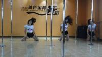 临沂单色舞蹈钢管舞培训