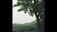 pua全套内部私密课程1000g打包百度网盘泡妞秘籍本子图片11