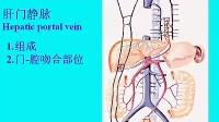 中山大学人体解剖36-4