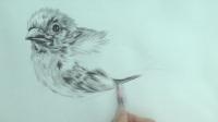 南孔藝術素描小鳥