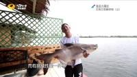 渔乐大周末20170603期:三钓三餐泰好玩(上)
