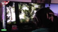 【E3 2017 试玩】《孤岛惊魂 5 -Far Cry 5》狗狗同伴与「钓魚」小游戏