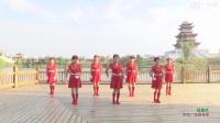 杨丽萍广场舞大全恰恰舞基本步教学全套(14)