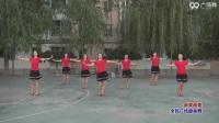广场舞服装新款套装杨丽萍广场舞2017健身操 (9)