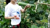 要吃什么蔬菜直接去田里摘,都是天然绿色蔬菜,这就是农村生活!