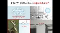 氢键(20)Fourth Phase of Water Dr. Gerald Pollack