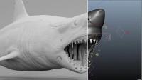 惊悚电影《鲨滩》特效揭秘,不光有S美好的身体,那逼真的鲨鱼特效更是让我长跪不起啊